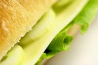 Die Verfügbarkeit von Aminosäuren aus der Nahrung