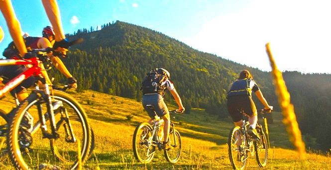 Testen Sie in Ihrem Urlaub im Allgäu die neuesten BMW Bikes!
