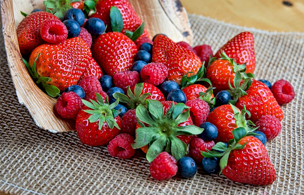 Rich Berry Benefits Attract Berry Supplement Manufacturers!
