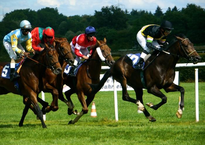 Baden-Racings: Pferderennwoche 2011 bei  Baden-Baden