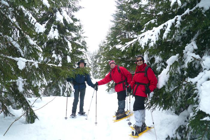 Wintersport in Österreich - Urlaub  in Tirol