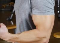 Fitnesstraining: Die Geist-Muskel-Verbindung
