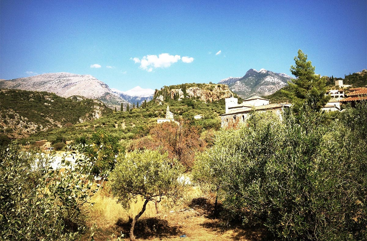 Olivenernte in Griechenland - was für ein Urlaub!