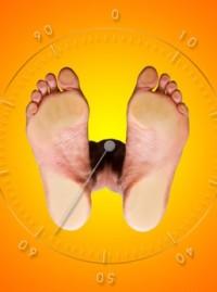 Weight Watcher – el peso bajo control