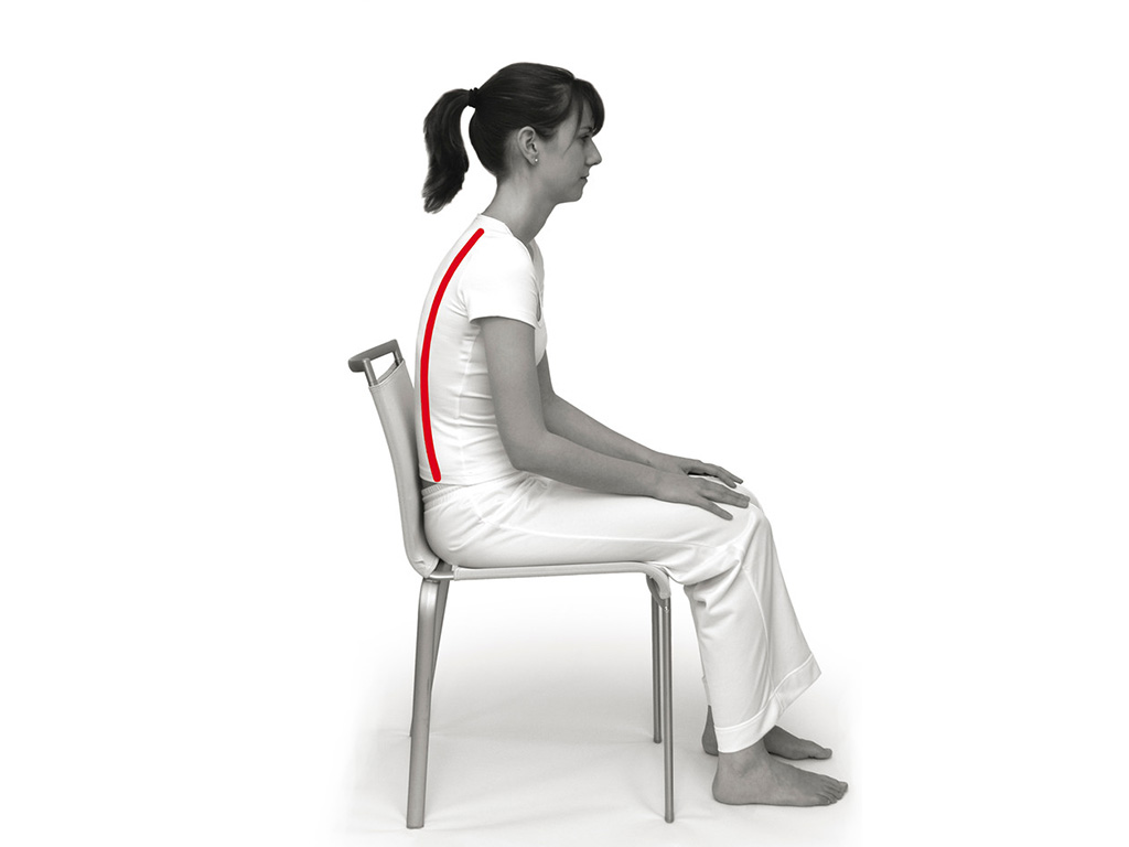 SISSEL® Sit Special Sitzkeil 2 in 1 - 2