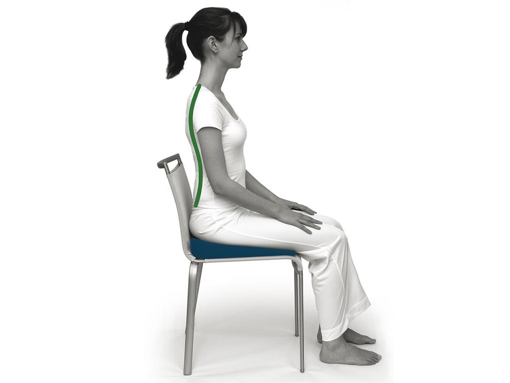 SISSEL® Sit Special Sitzkeil 2 in 1 - 1