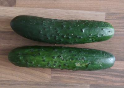 Hähnchenbrust (oder Pute) mit Gurkensalat