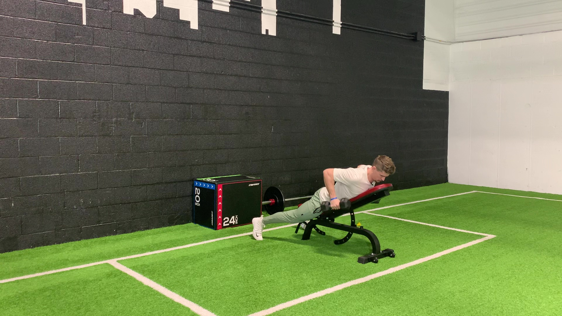 DB Chest Supported Row