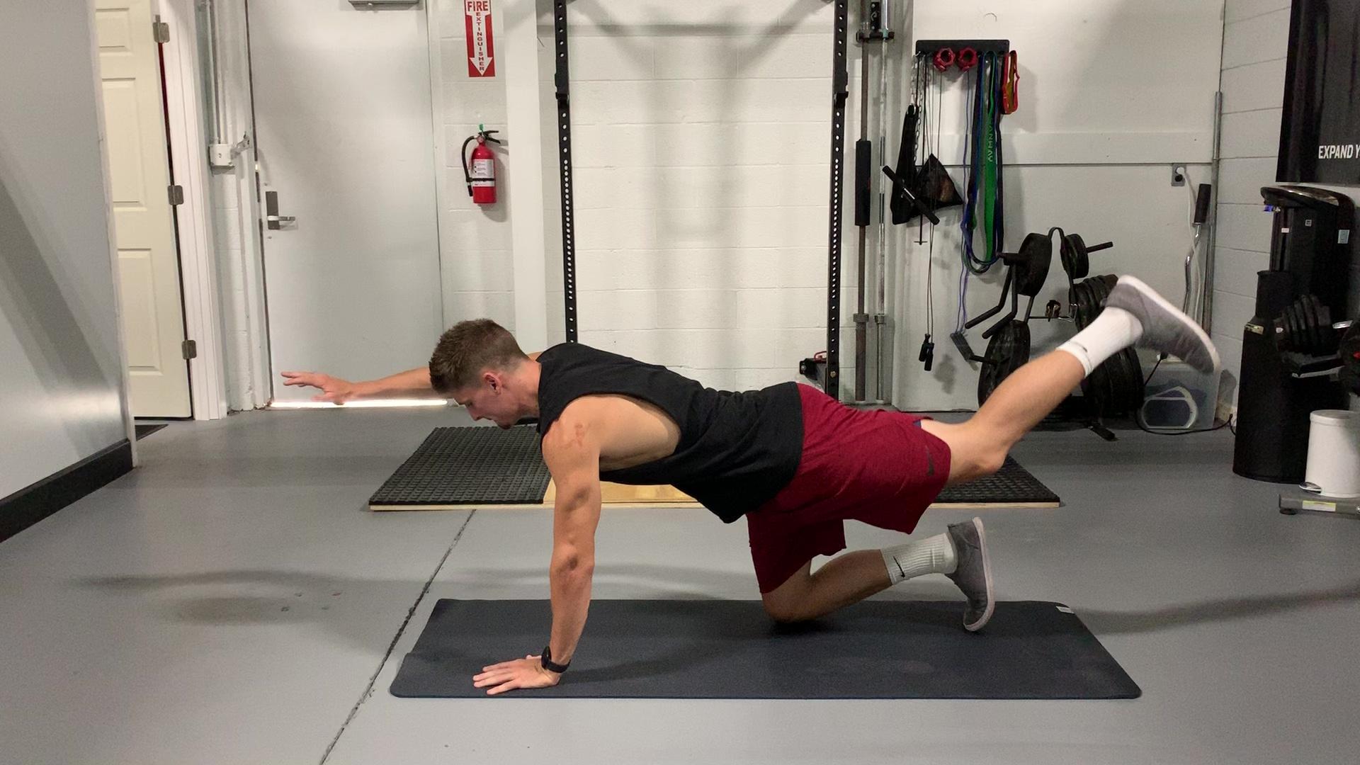 Quadruped Arm Opposite Leg Raise