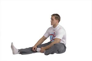 Estiramiento de espalda baja, tendones y gemelos