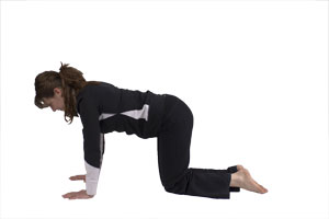 Hip Extension Back Leg Raises