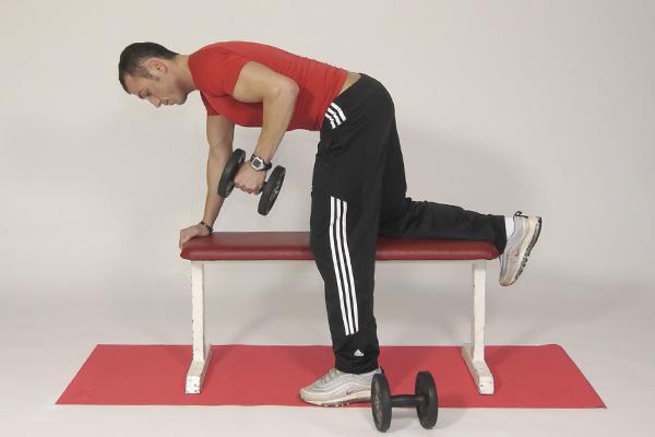 Obere Rückenmuskulatur und Armmuskulatur - Trizeps
