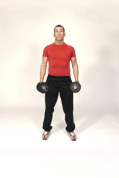 Schulter- und Rücken trainieren