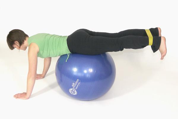 Gesäß- Rücken- und Oberschenkelmuskulatur I.