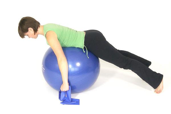 Rücken und die Schultergürtelmuskulatur  II.