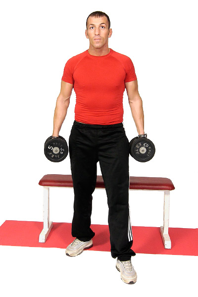 Alternating Biceps Curls with Free Weights
